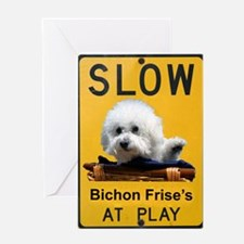 bichons at play Greeting Card