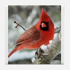 Unique Cardinal in snow Tile Coaster