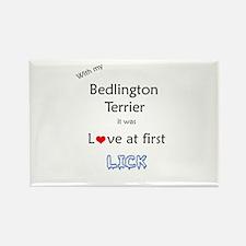 Bedlington Lick Rectangle Magnet