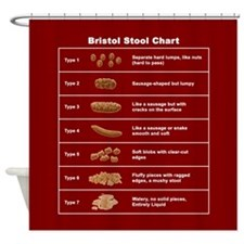 Bristol Stool Chart Shower Curtain