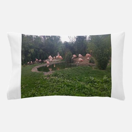 Unique Outdoor flamingo Pillow Case