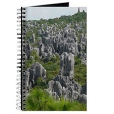 STONE FOREST 1 Journal