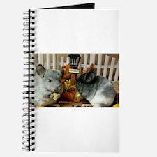 White Ebonies Chinchillas Journal