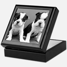 Boston Terrier puppies Keepsake Box