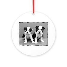 Boston Terrier puppies Round Ornament