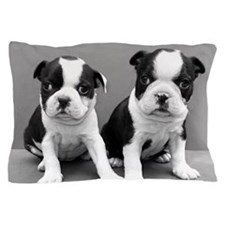 Boston Terrier puppies Pillow Case