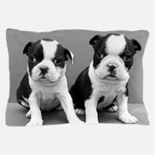 Boston Terrier puppies Pillow Case