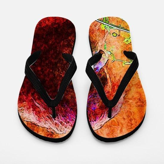 Abstract Animal Flip Flops