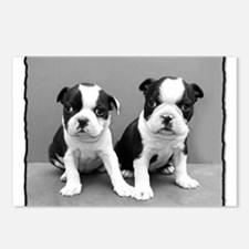 Boston Terrier puppies Postcards (Package of 8)