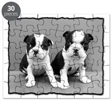 Boston Terrier puppies Puzzle