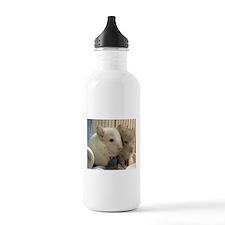 Chinchilla Babies Water Bottle