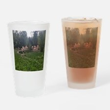 Funny Outdoor flamingo Drinking Glass