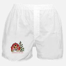 Barnyard Animals Christmas on the Far Boxer Shorts