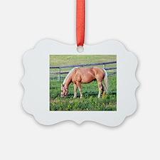 Unique Western horse Ornament