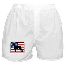 American Giant Schnauzer Boxer Shorts