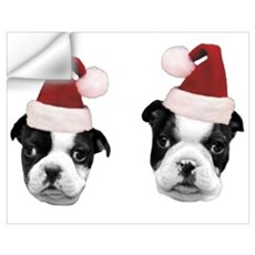 Christmas Boston Terriers Wall Decal