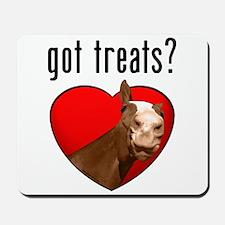 Got Treats? Cute Horse Mousepad