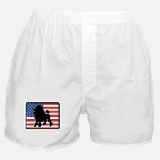 American Toy Poodle Boxer Shorts