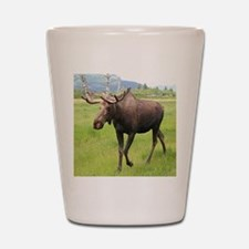 Alaskan moose with antlers 2 Shot Glass