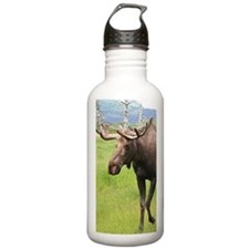 Alaskan moose with ant Water Bottle