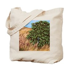 John 1.48 Woven Blanket Tote Bag