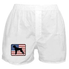 American Wirehaired Pointer Boxer Shorts