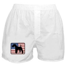 American Wire Fox Terrier Boxer Shorts