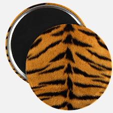 Tiger Fur Magnets