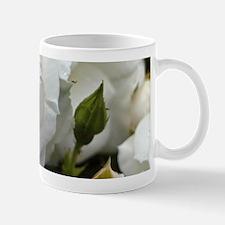 Rose20151101 Mugs