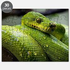 Unique Animals wildlife Puzzle