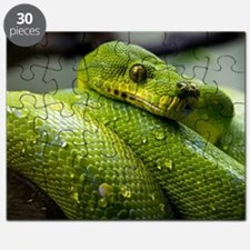 Cute Snake eyes Puzzle
