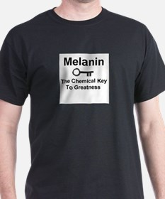 Unique African american T-Shirt