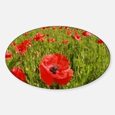 Poppy Field PRO PHOTO Bumper Stickers