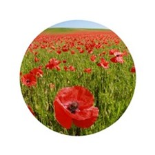 Poppy Field PRO PHOTO Button