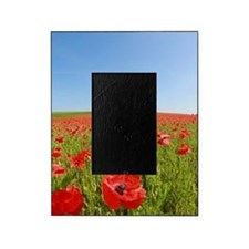 Poppy Field PRO PHOTO Picture Frame