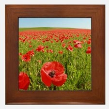 Poppy Field PRO PHOTO Framed Tile