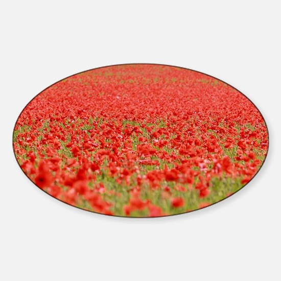 Remembrance Day Poppy Bumper Stickers Car Stickers
