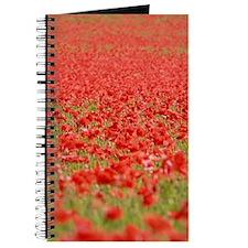 Poppy Field - Pro Photo Journal