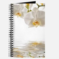 White Orchids Journal