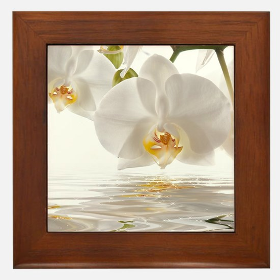 White Orchids Framed Tile
