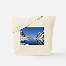 Antarctica By Sea Tote Bag