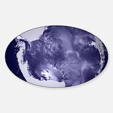 Psychedelic Antarctica Decal