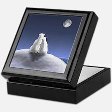 Polar Bears by Moonlight Keepsake Box