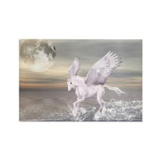 Pegasus-Unicorn Hybrid Magnets