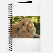golden retriever grass Journal