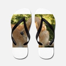 golden retriever grass Flip Flops