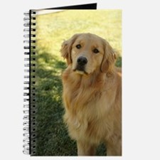 Cool Blonds Journal