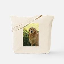 golden retriever n Tote Bag