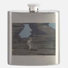 sea lion and rock cave Flask