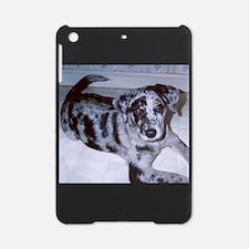puppy blue merle catahoula leopard dog iPad Mini C